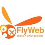 FLY WEB