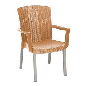 Chaise, Fauteuil Classique Havane, Empilable, Vernis Tabac